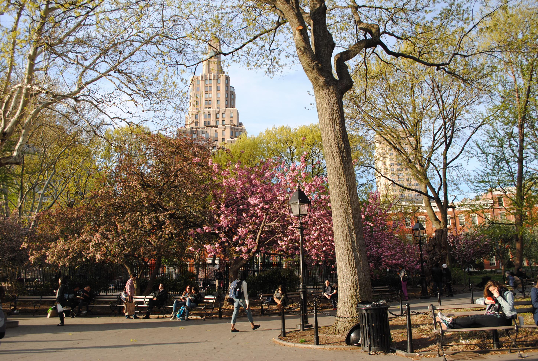 descriptive essay washington square park -here are some guidelines for writing a descriptive essay: my favorite food essay living at an nyu dorm by washington square park.